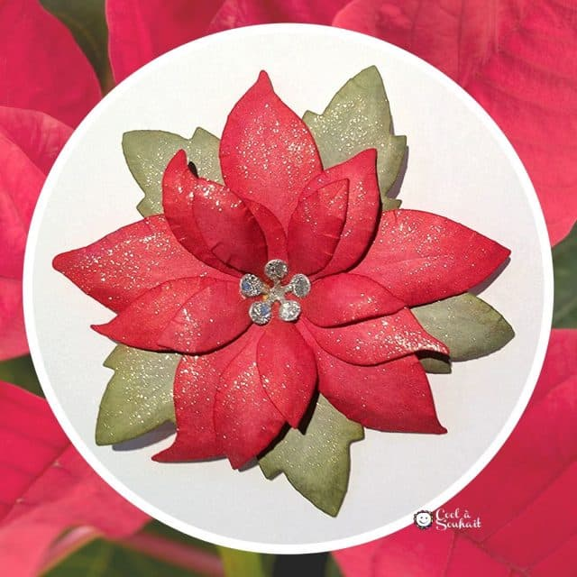 Un Poinsettia en papier cartonné, quel bel embellissement à fabriquer pour nos cartes de Noël.
