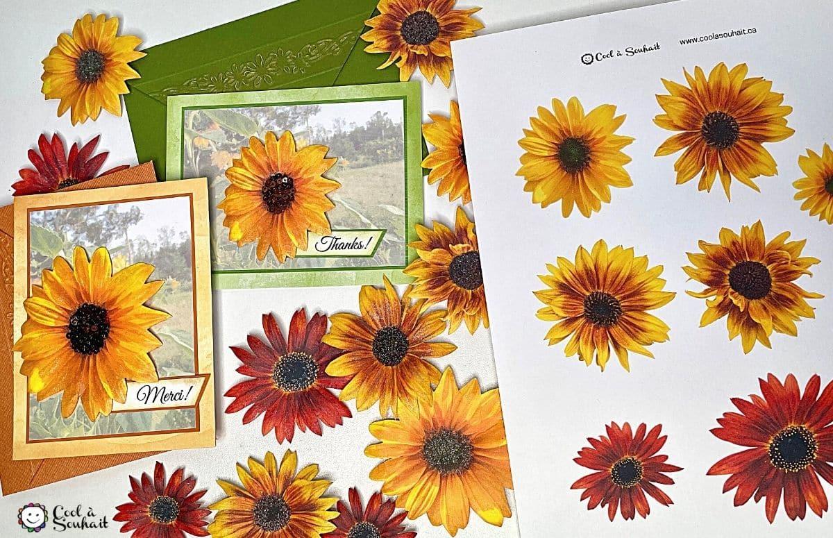 tournesols (sunflowers) à découper.